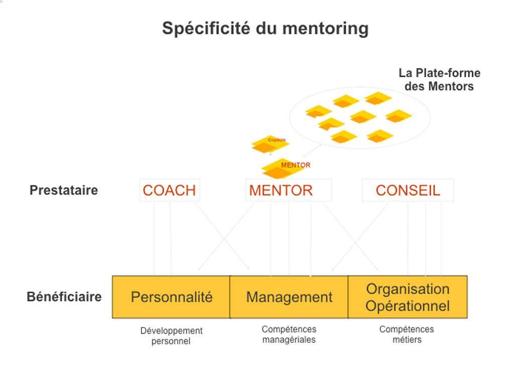 illustration de la spécificité du mentoring